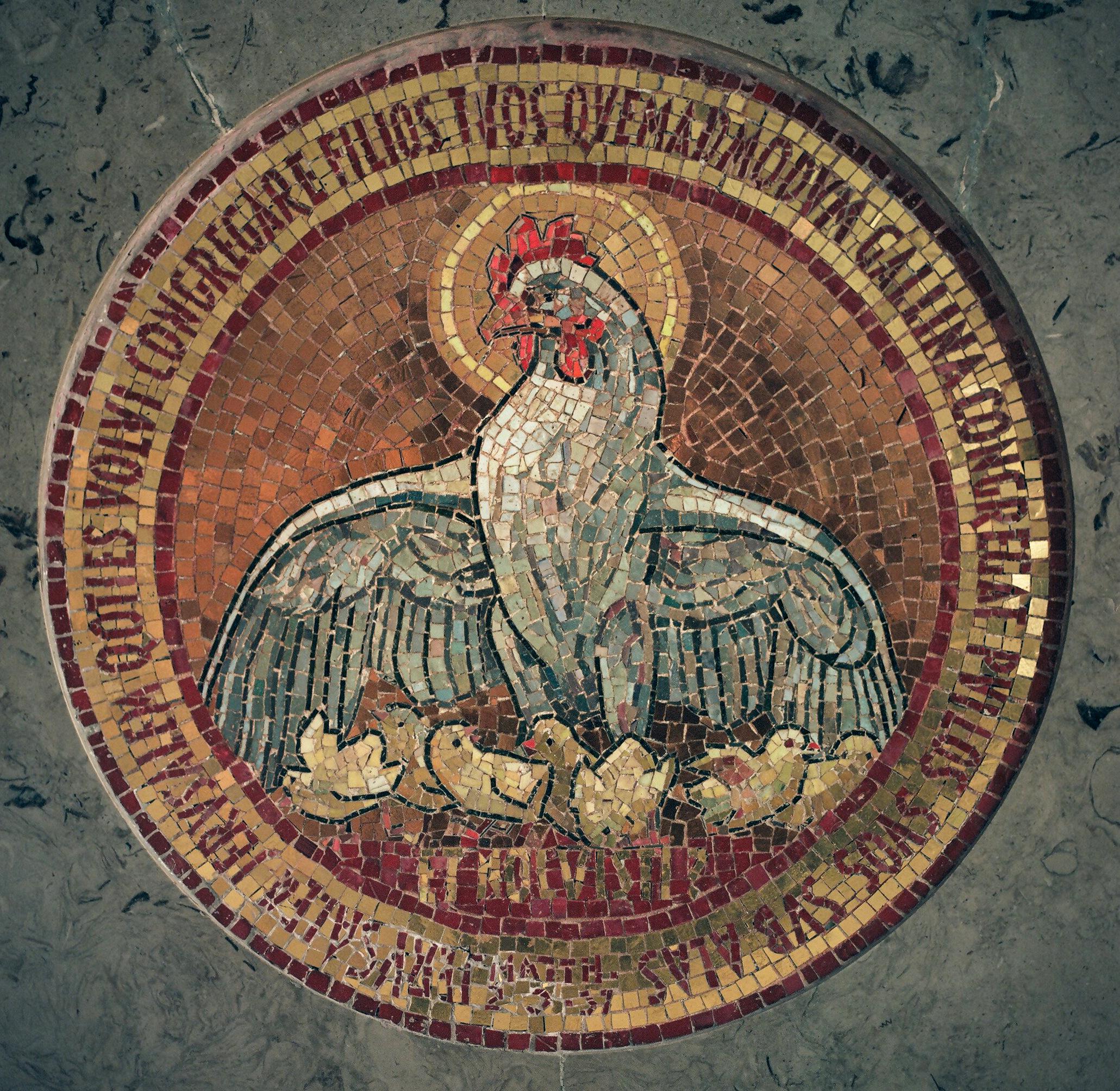 Dominus Flevit mosaic, Jerusalem, Israel