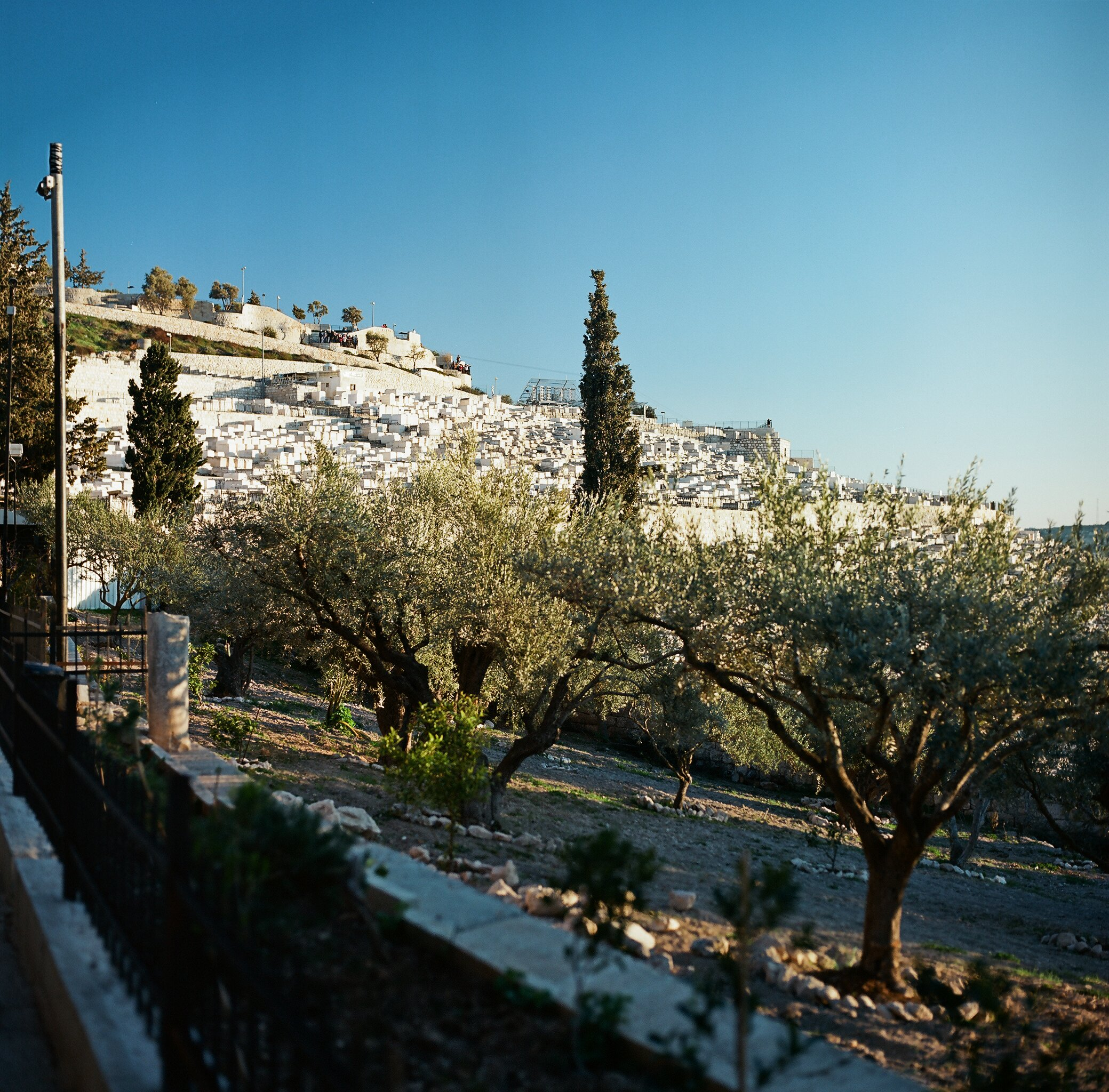 Jewish cemetery on the Mount of Olives, Jerusalem, Israel.